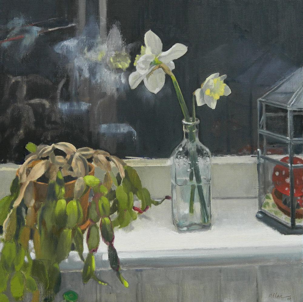 Narcissus, 2014