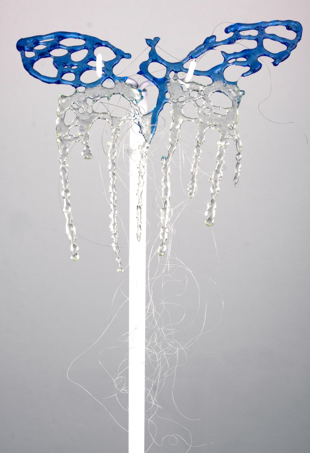 Butterfly Comb (Sophia)KATE CLEMENTS, 2013 PARAGRAPH GALLERY SHOW, FULL SIZED JPG-18.jpg