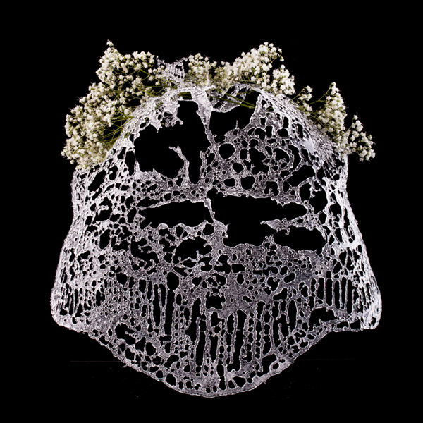 clearveil_thumb.jpg