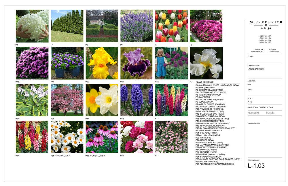 2016_8_1_M.Frederick_KRAMNJ_LANDSCAPE-4.jpg