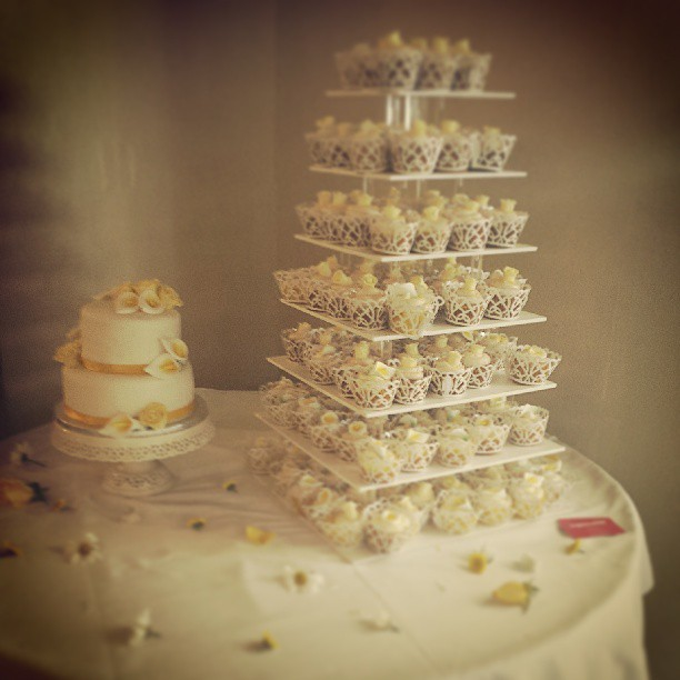 DeAndra & Robert's wedding cake and cupcake tower.