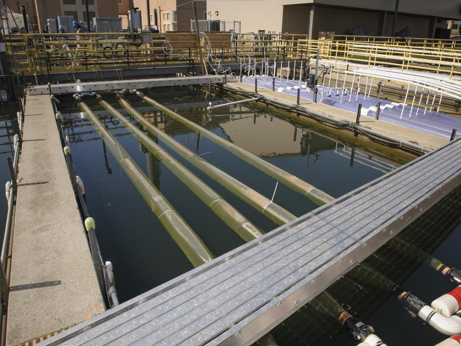 This is San Francisco's Southeast Treatment Facility, one of three such plants citywide.      The City treats 80 million gallons of wastewater on dry days and 575 million gallons on rainy days.      All-in-all, the sewer system treats 40 billion gallons of wastewater each year.