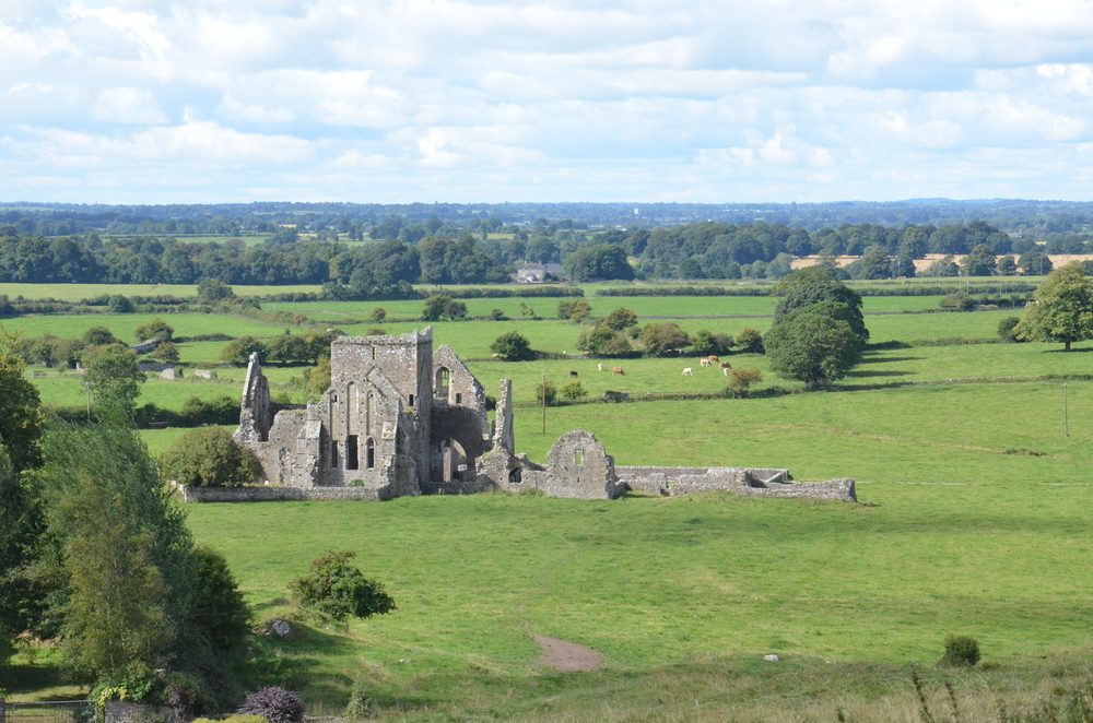 View of the monastery from the Rock of Cashel