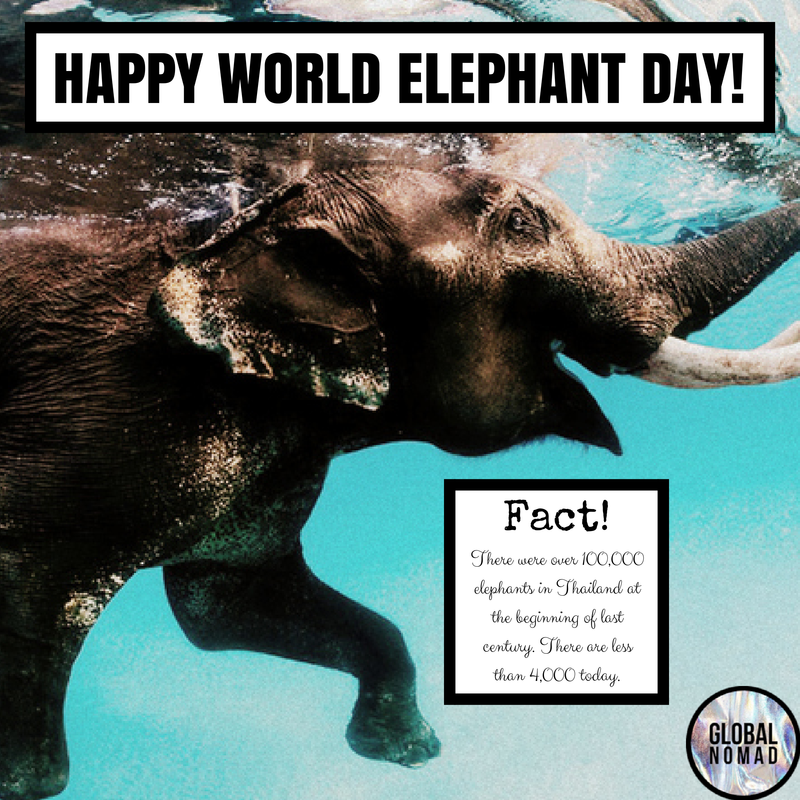 HAPPY#WORLDELEPHANT DAY! (2).png