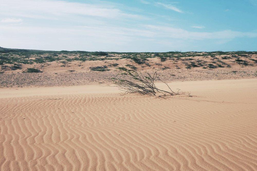 La Guajira Desert.