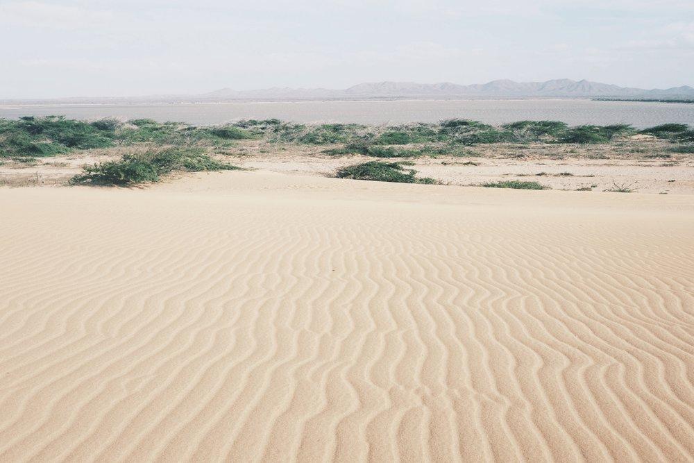More desert vibes.