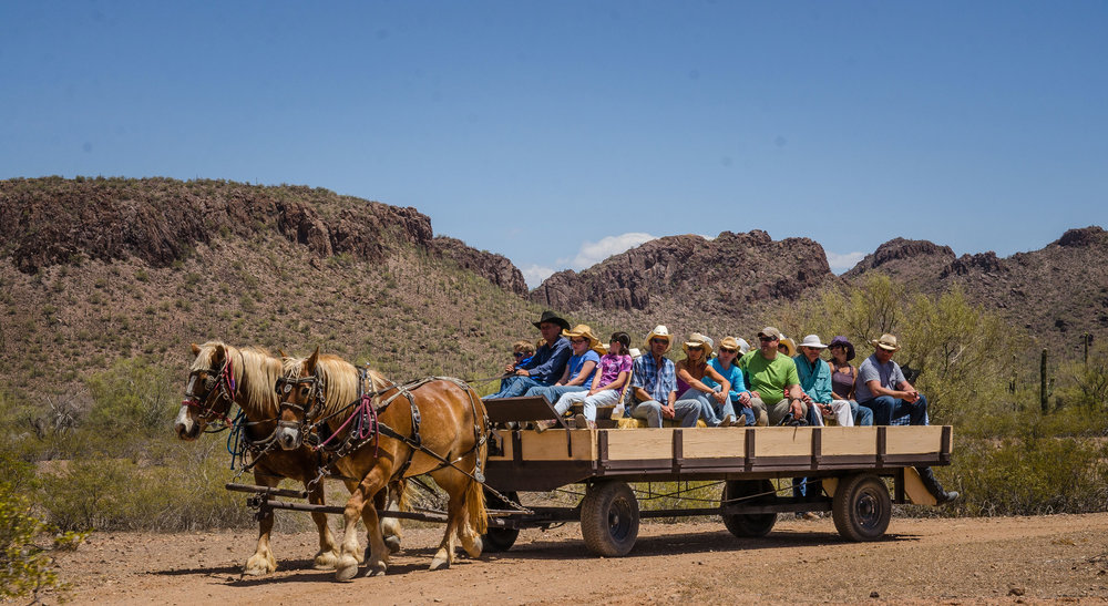 Laid-back Dude Ranch Resort Next To Saguaro National Park - 1.5-hour drive from Phoenix