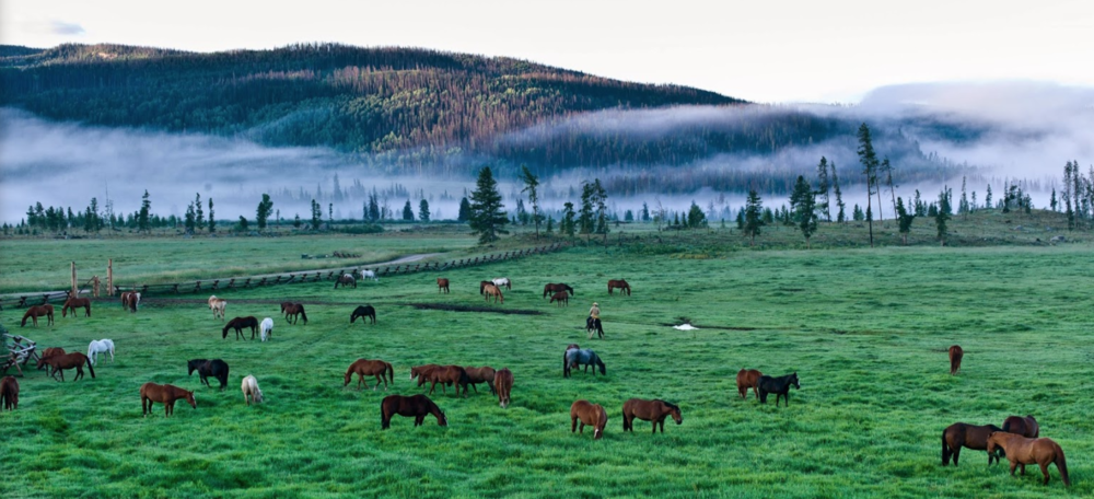Family-Friendly Luxury Ranch in colorado - 3.5-hour drive from Denver