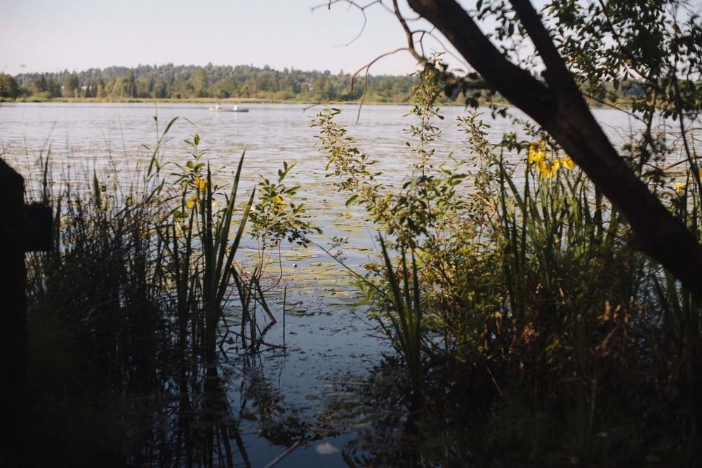 marshisland-37.jpg