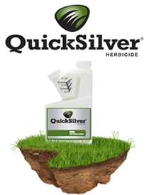 quicksilver golf.JPG