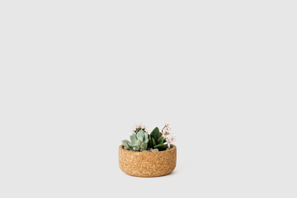mini_planter_2.jpg