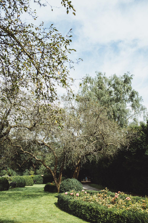 POMMERY GOES OUTDOOR: Salut Rosengarten im Humboldthain!
