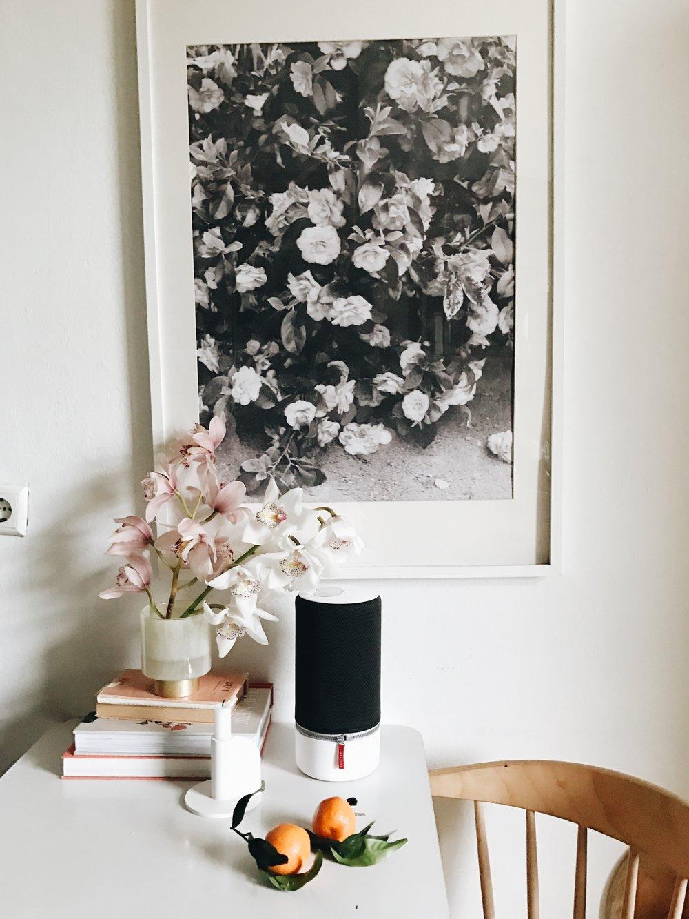Studio Essentials: Libratone Lautsprecher