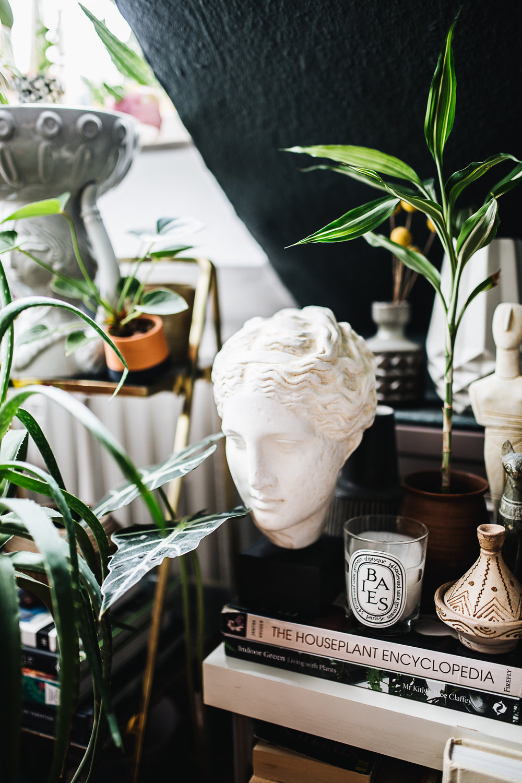 Plantstory Igor Josif