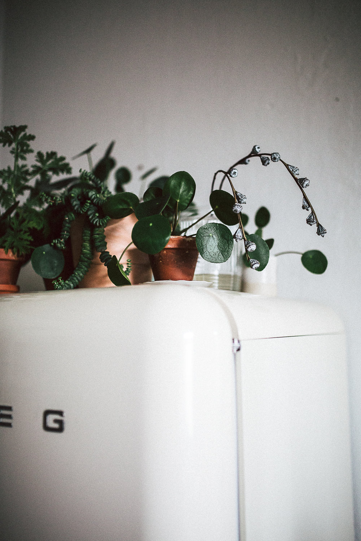 Projekt Küche: Der Eiskasten zieht ein