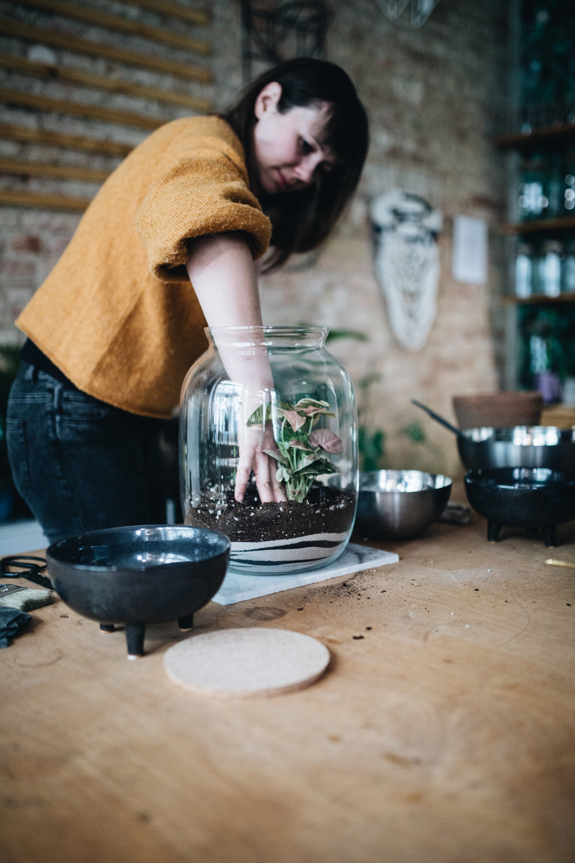 DIY: Pflanzenterrarium