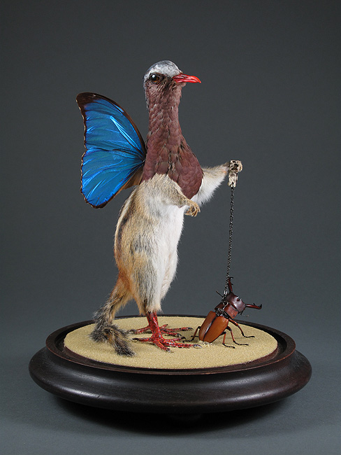 something about bizarre taxidermy really piques my interest.