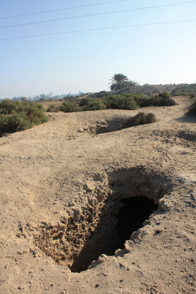 Article 0409: Excavated gravesites on the Eastern part of Tel el Yahudiya