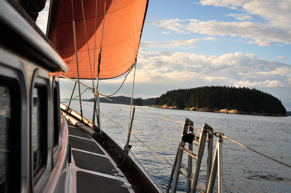 Starboard Tanbark Sail