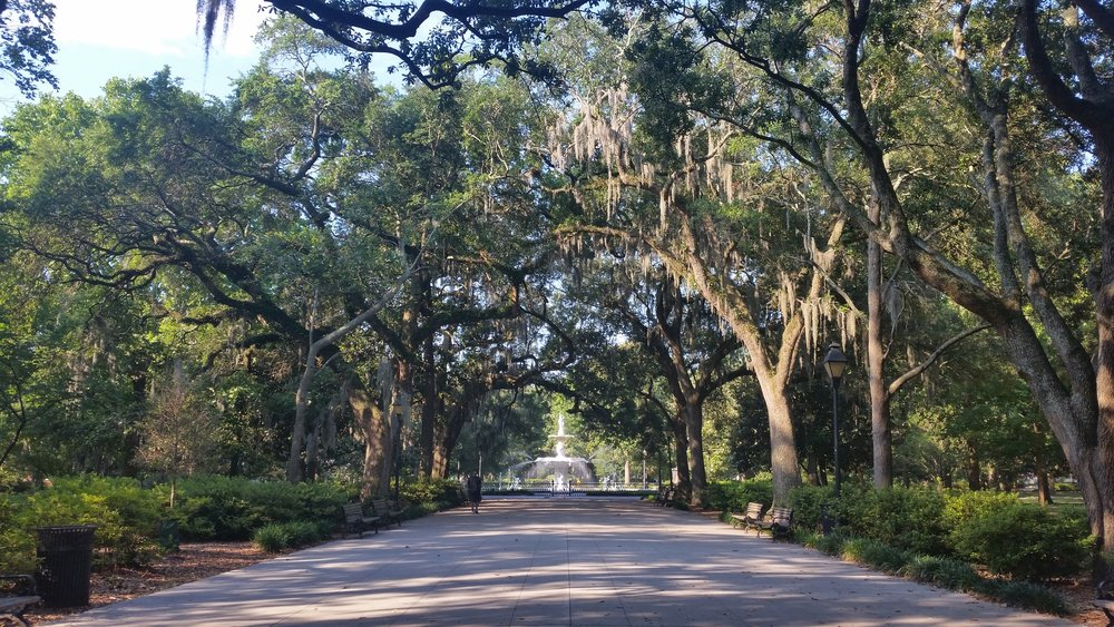 Live oak trees filled every park in the grid of city squares that makes up historic Savannah. This is the iconic fountain at Forsyth square. I love those trees!