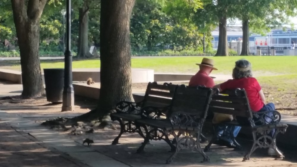 A couple on a bench. I tried really hard not to be a creepy person taking picture of other people, but sometimes I couldn't help myself. I was discrete, though.