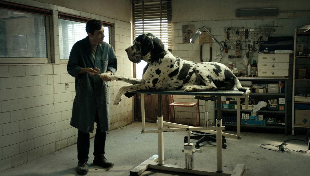 Dogman_dog-01.jpg