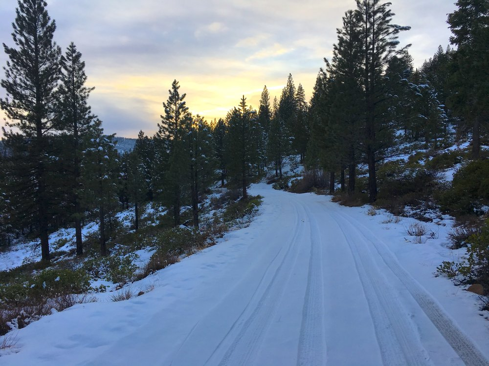 The road home, for now, Sage Hen Road, Truckee CA.