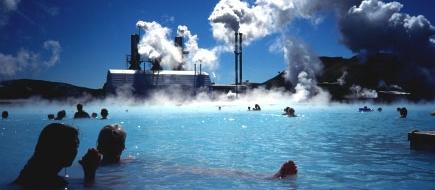 hot springs plant.jpg
