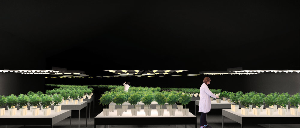 INTERIOR PERSPECTIVE GROW FACILITY W LEDS.jpg