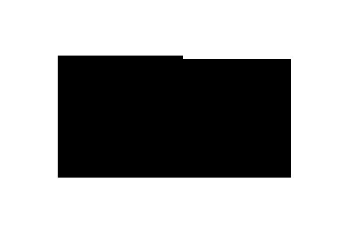 logo-vv2.png