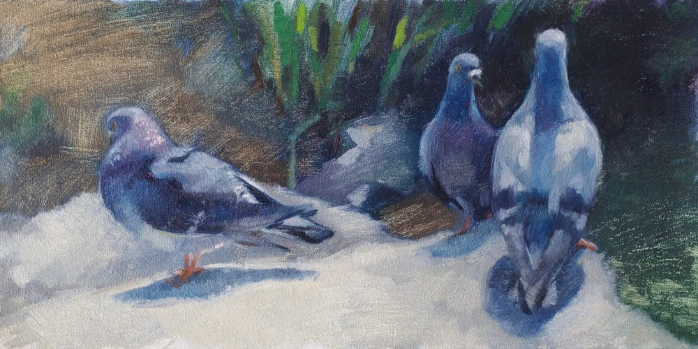 "Pigeons  - 6""x12"" - oil on canvas -  SOLD"