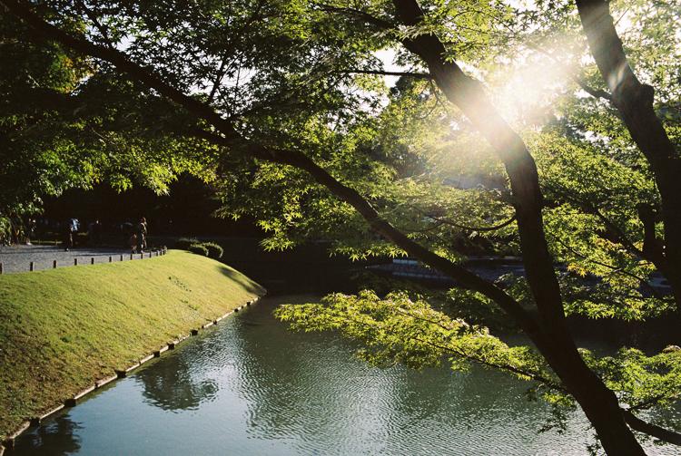 Nara park, Nara