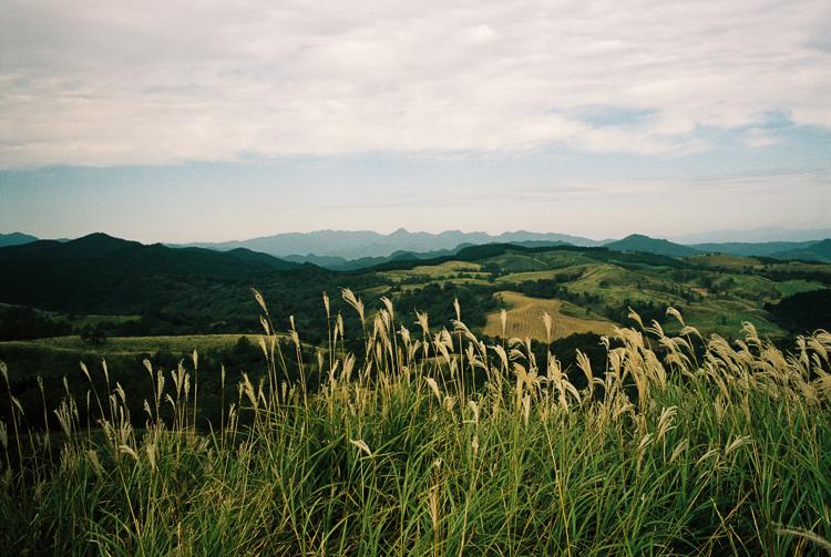 Grass, Aso