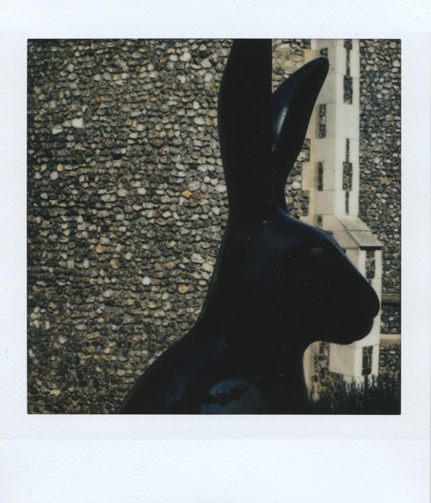Hare - Lomo Instant Square