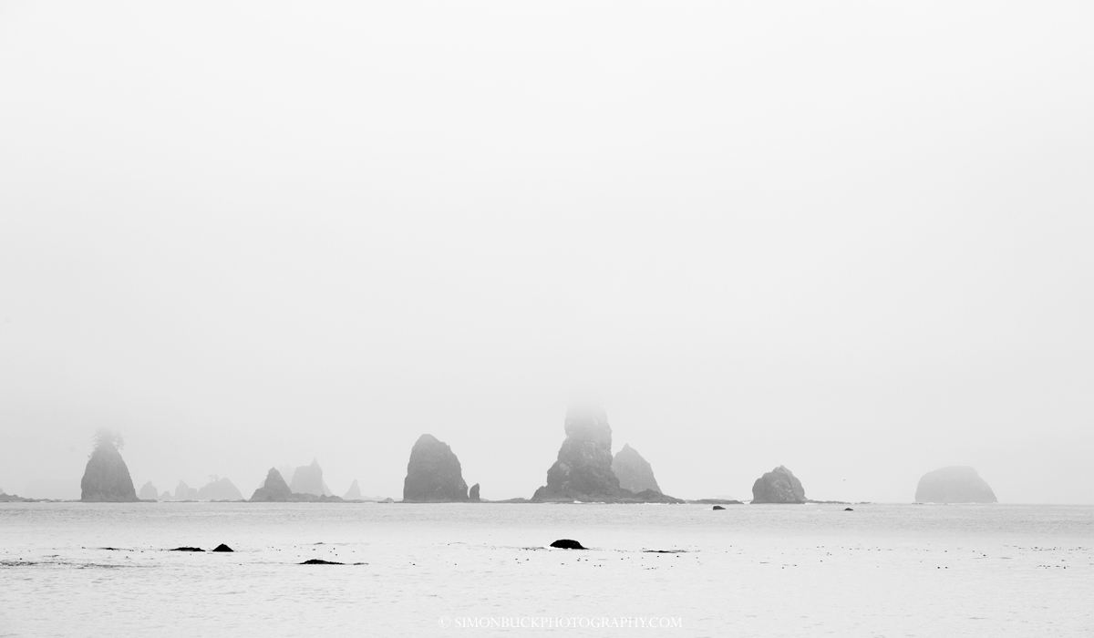 La Push, sea stack, beach, Pacific, ocean, Washington, Olympic Park, USA