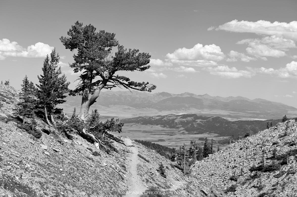Sacajawea Peak, Bozeman, Montana, Landscape, photograph