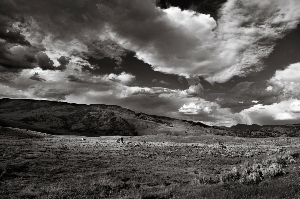 Lamar valley, Landscape photography, bw, yelleowstone, wyoming, usa