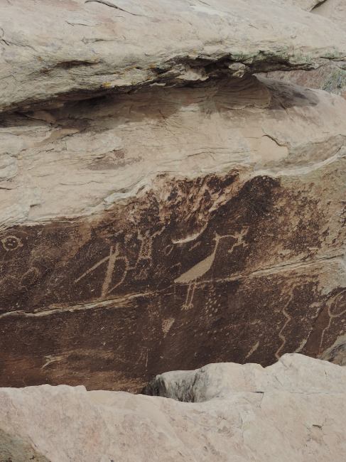 Petroglyph, Ancestral Pueblo Culture, Petrified Forest National Park, AZ