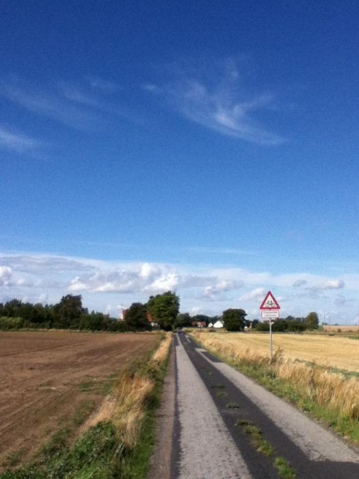Skaelskor, Denmark August 2014