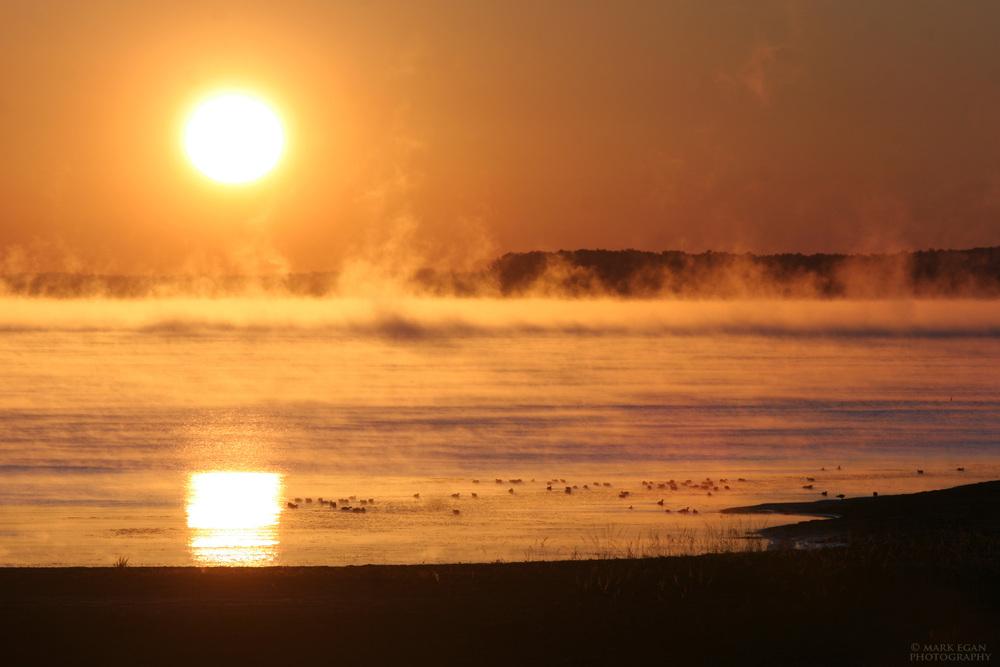 sunriseeasttxlakeFv2LFW.jpg