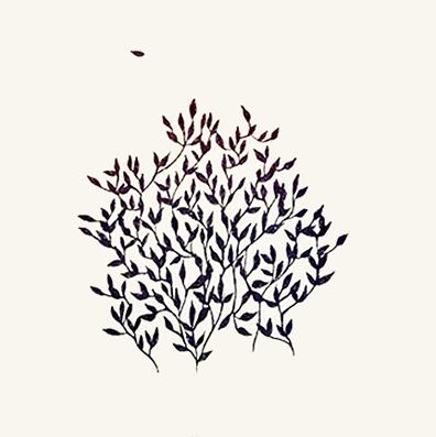 12. leaf.png