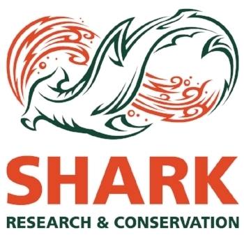 SharkResearch_Primary (1).jpg