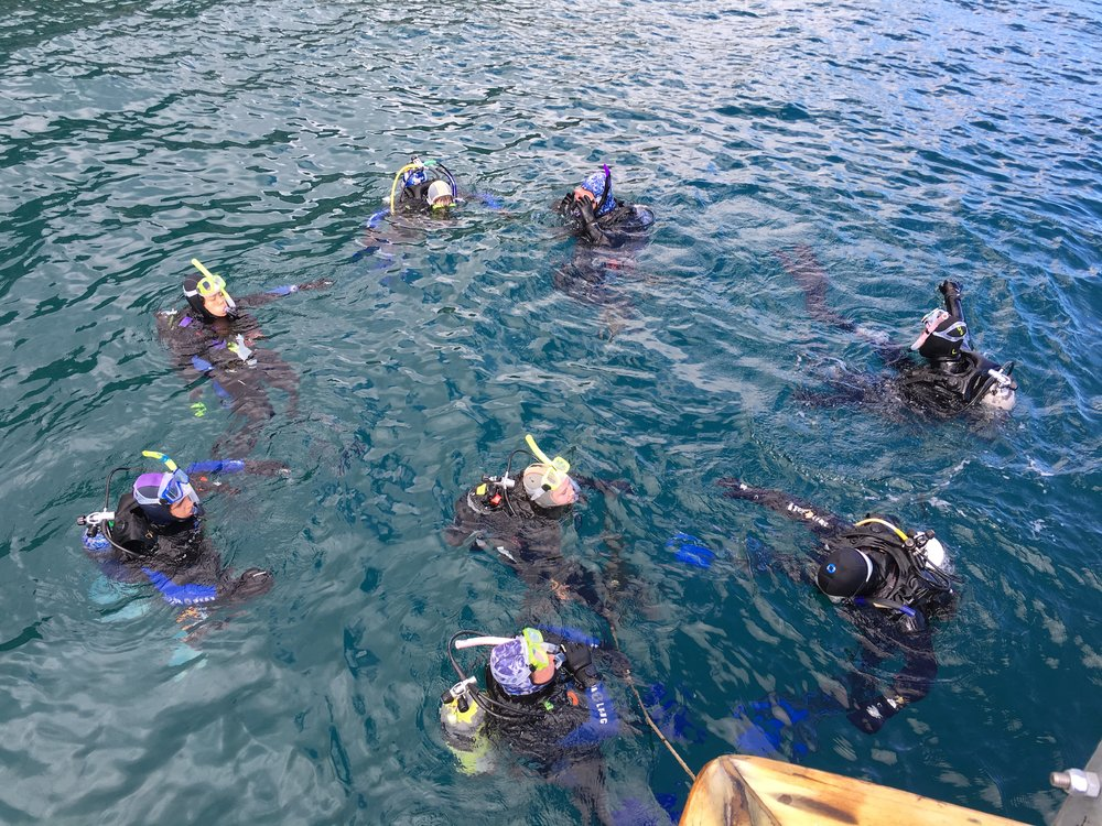 High school student divers trained by Nancy to participate in the abalone restoration efforts.