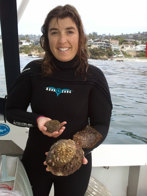 Nancy Caruso holding green abalone ( Haliotis fulgens ) off the coast of California.