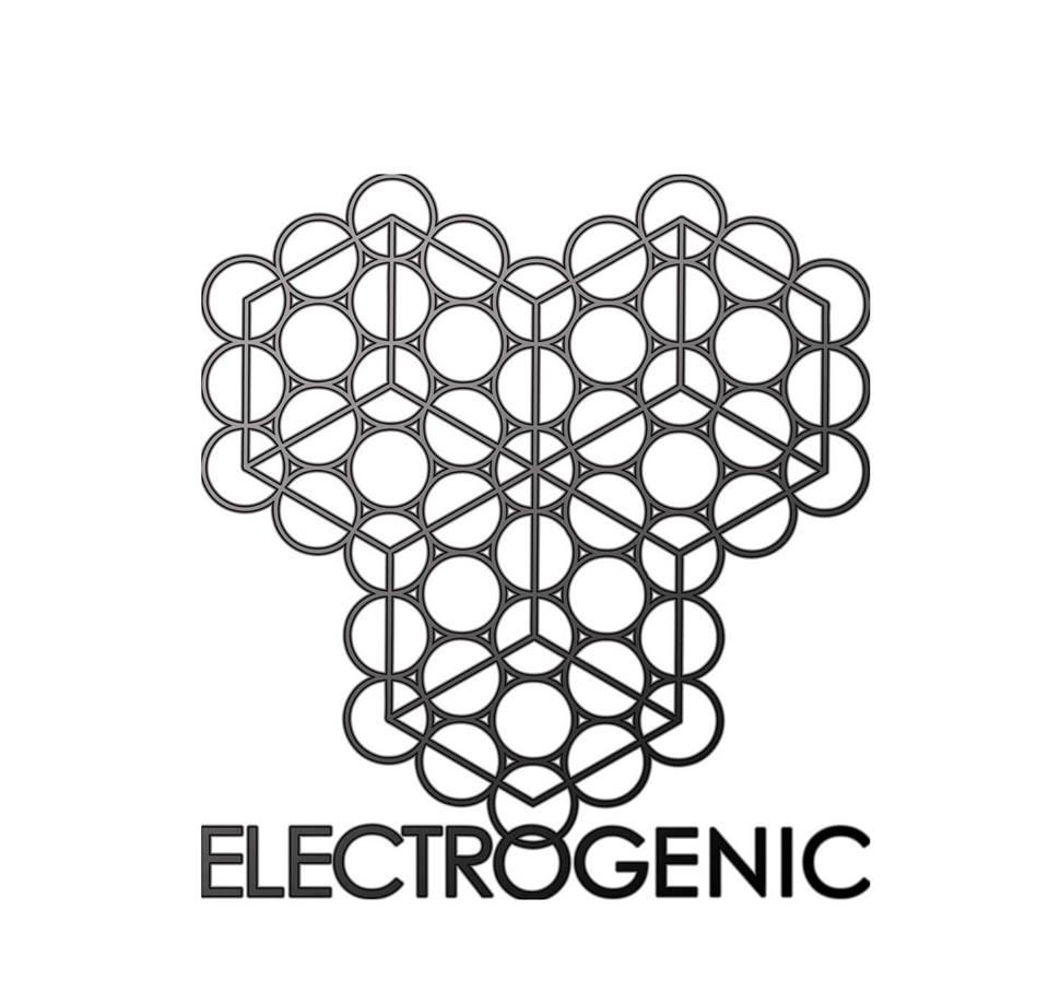 Digital Vagabond Electrogenic Logo.jpg