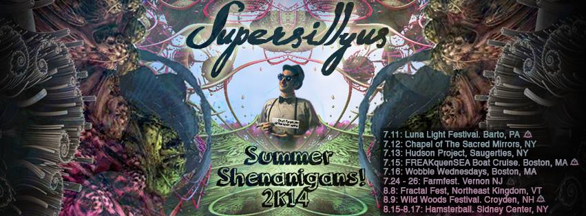 Sillian Design Summer Shenanigans 2014 2.jpg