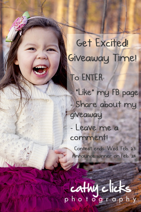 We've reached 250 fans on Facebook!  Time for a GIVEAWAY!  And this one is huge! Win a FREE PHOTO SESSION and $100 PHOTO CREDIT! To enter:  You must live or have the photo session within 30 miles of Scarborough, Maine, like my Facebook page, share about my giveway on your Facebook page, and then leave me a comment on my Facebook page to enter into the contest. You have until Wednesday night, Feb. 23 to enter.  I will randomly pick a name and announce the winner the following day!   I can't wait to hear from you!
