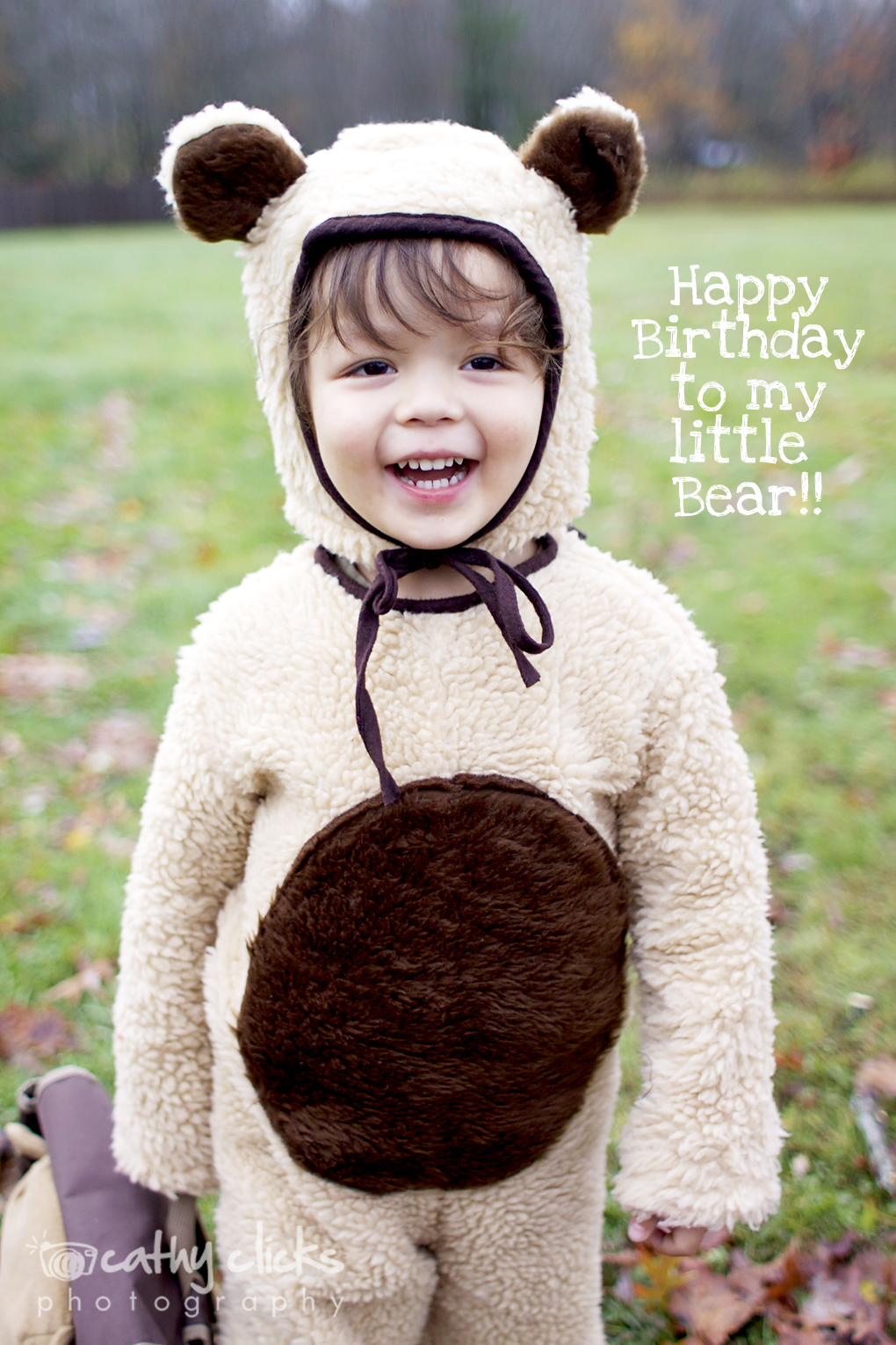 "I cannot believe another year has flown by and my little Bear turned three.  I look back at photographs from this year and he has really changed.  My once little baby is now all grown-up looking.  However, I think because I have two older children, Bear still looks ""babyish"" to me.  I am trying to cherish this time because I know that with a wink of the eye, he'll be starting Kindergarten soon.   So, it has been a busy last few months.  I forgot how exhausting it is to have a newborn, let alone three other children to tend to.  I've also had a full schedule of sessions, and even got the pleasure to capture class portraits for a preschool.  I will slowly post the many amazing photographs from recent sessions soon.  But, today is all about celebrating with my little guy!"