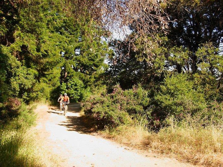 Mountain Bike Trail Ride Soquel CA.jpg
