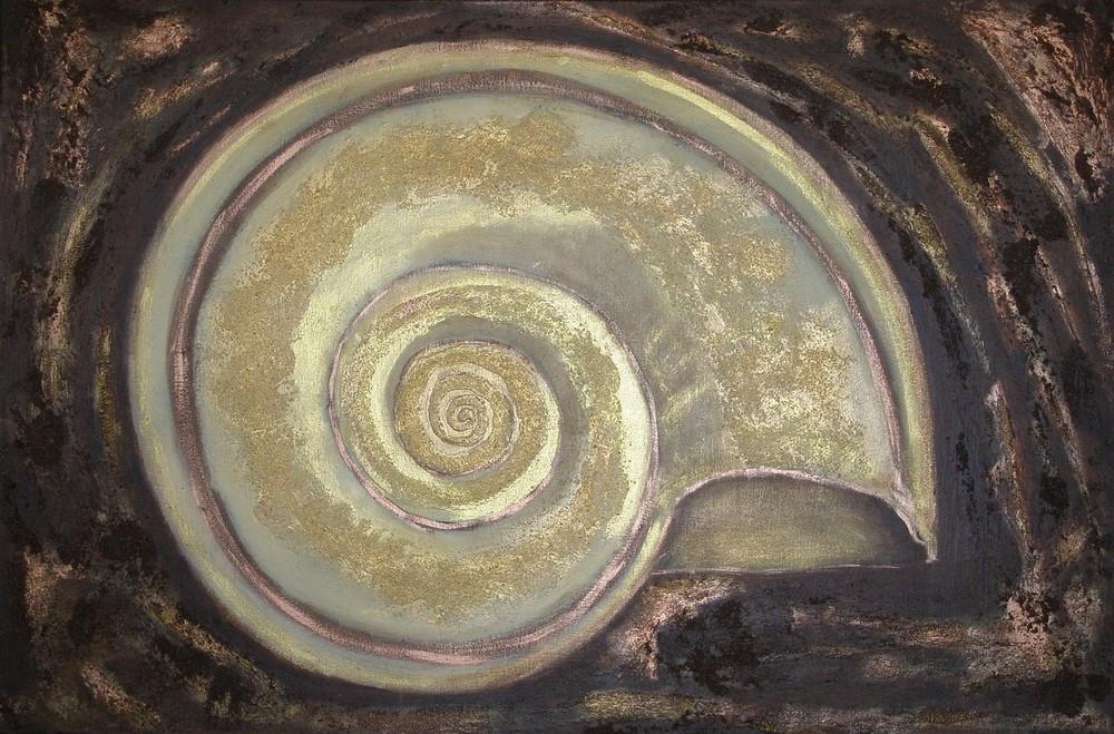 seashells 010.jpg